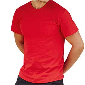 Heavy Cotton Pocket T